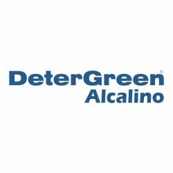 DETERGREEN ALCALINO BOTELLA 1 lt